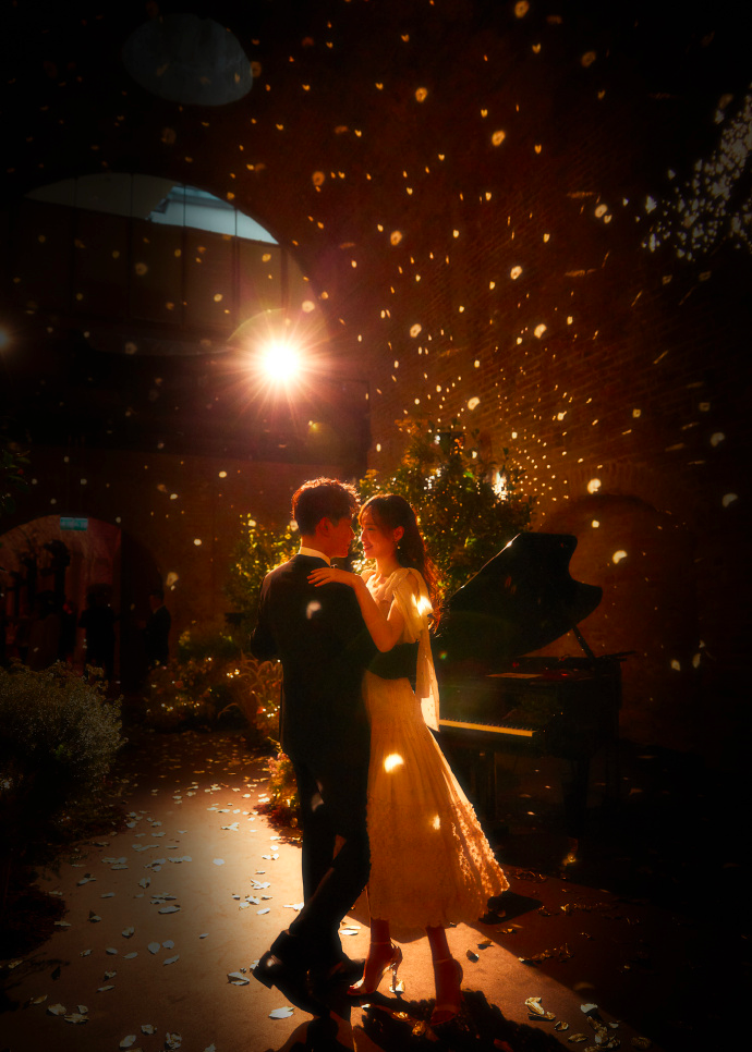 Tang Yan Luo Jin Vienna Wedding Pictures