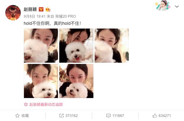 Zanilia Zhao Liying and William Feng Shaofeng Seen on a Date, Debunking Marital Discord Rumors